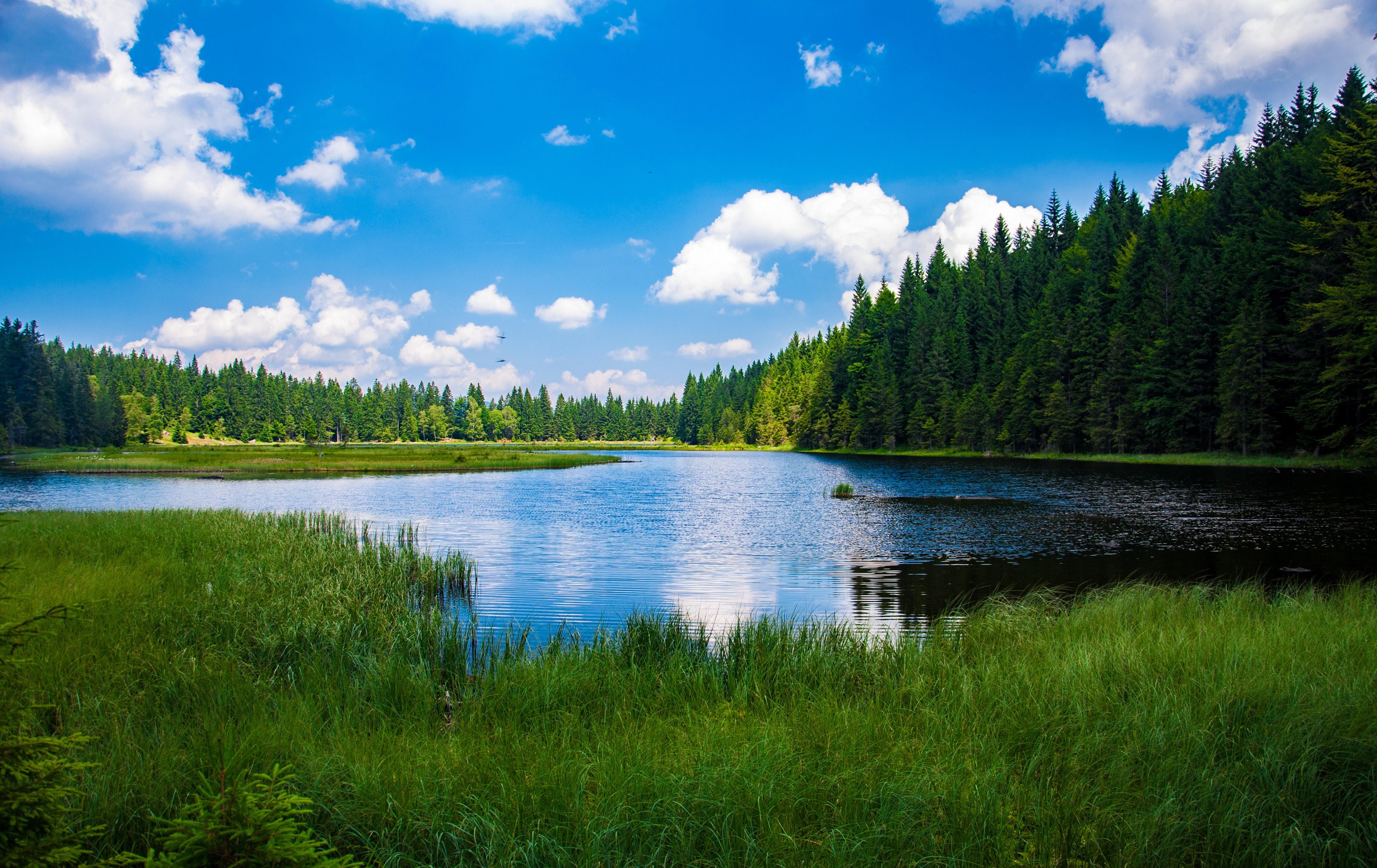 山口県の海・湖・小川が楽しめる無料キャンプ場おすすめ5選