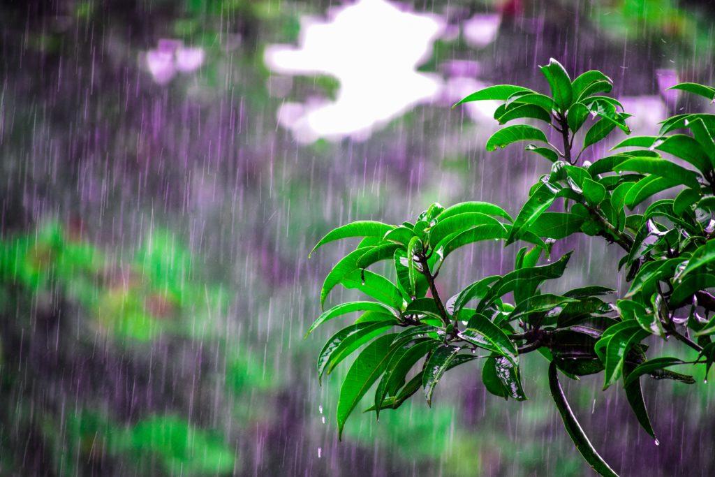 雨でもOKのキャンプ場!おすすめ5選!_1
