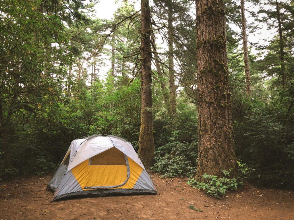 焚き火を雨の日キャンプでも楽しむ方法!_7