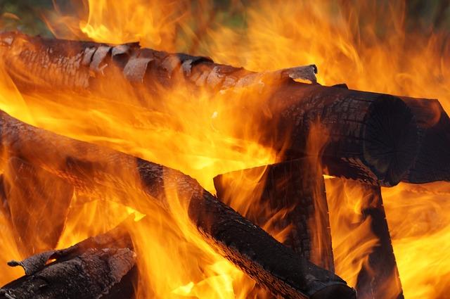 実は色々ある!焚き火の燃料の種類_3
